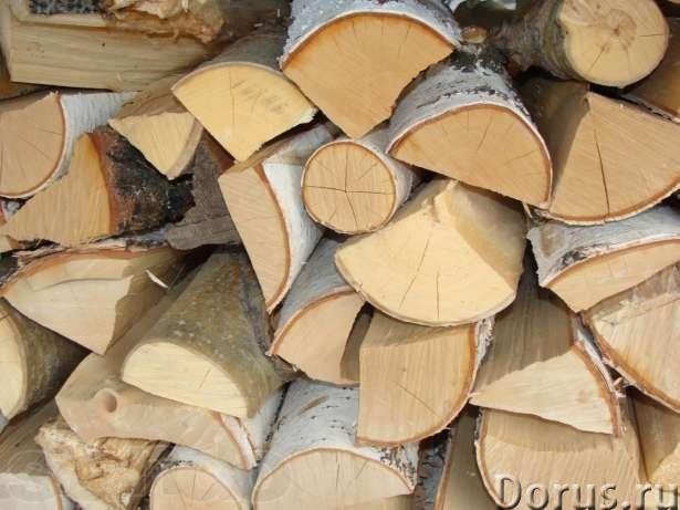 Дрова берёзовые в Королёве пушкино - Лес и древесина - Берёзовые колотые дрова, в машине уложенные в..., фото 1